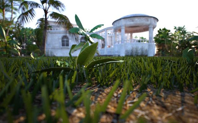 Palm View Villa IV